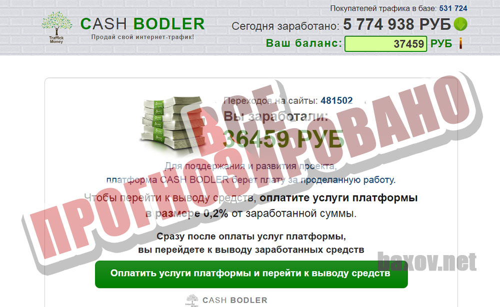 MONEY BOOTS / CASH BODLER / CASH SERF / MONEY SHIRT все прогнозировано